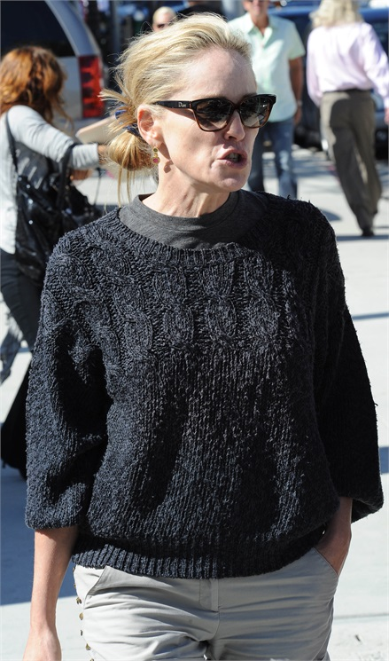 Sharon Stone Rughe